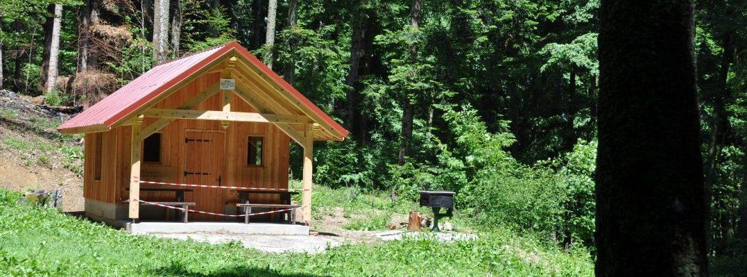 Thann-photo abri touristique dans la forêt