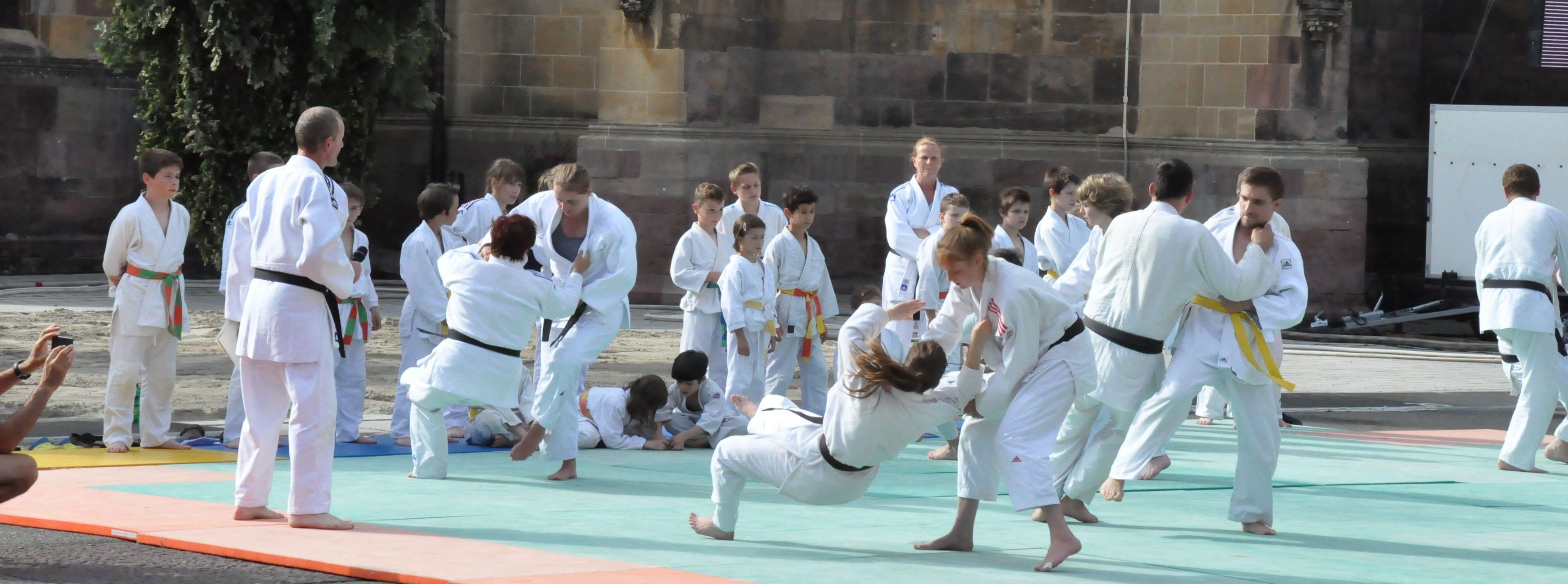 Demonstration de judo
