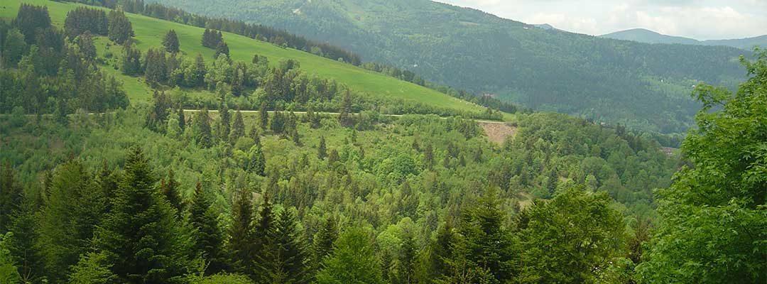 Programme des balades commentées – Maison de la Terre en Vallée de la Doller
