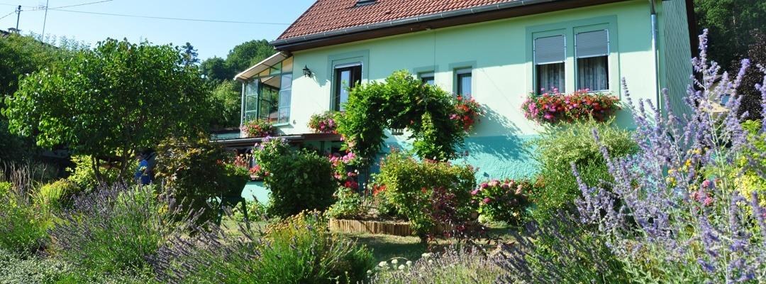 maison fleurie à Thann