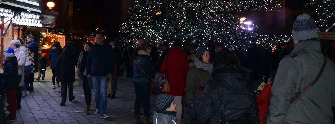 Decoration de Noël comprenant deux pères Noël, des branches de sapins et des eglantines