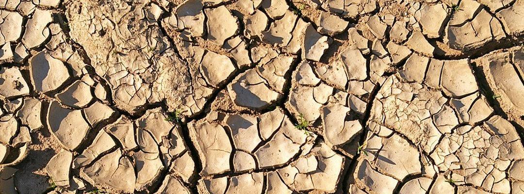 Vigilance sécheresse dans le Haut-Rhin